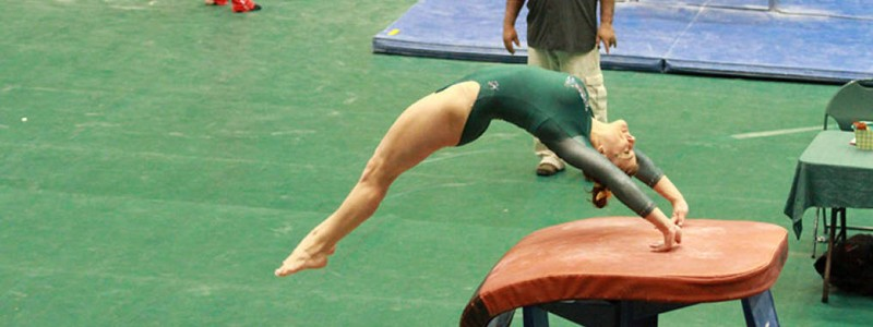 Gymnastics: College women finish second in tri-meet, while men defeat Springfield
