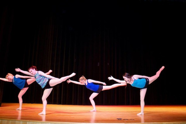 Students hope to create Dance Council