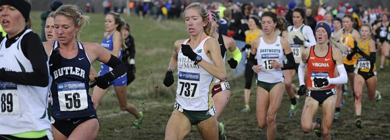 Women's cross country: Stites All-American again, Tribe finishes 17th at NCAAs