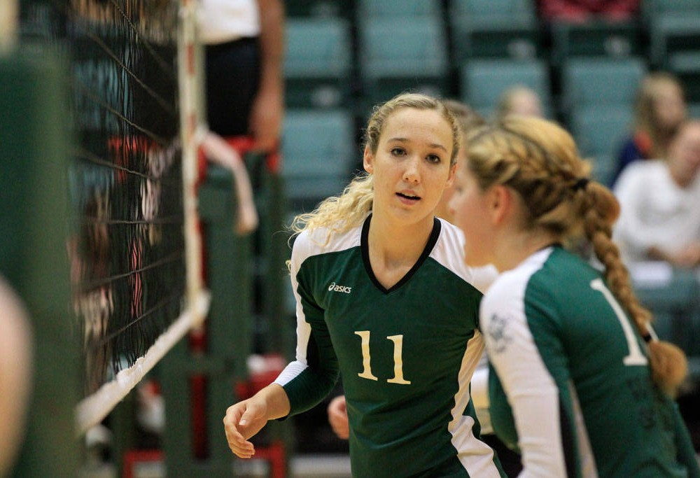 Volleyball: College loses last two at Kaplan