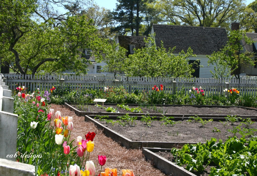 Watering Cans and Caterpillars: Preserving Colonial Horticulture