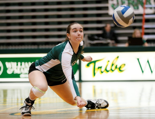 Volleyball: Tribe's season ends with 3-0 loss to UNC-Wilmington in CAA Tournament quartefinals