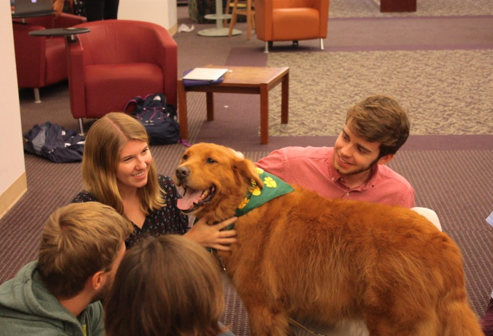 The emotional need for dogs in dorm rooms