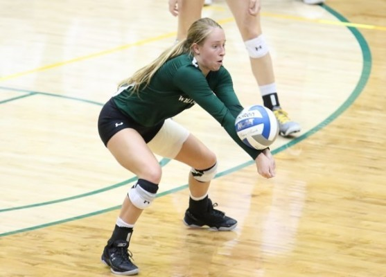 Volleyball: Losing streak extends to four with home losses to Hofstra, Northeastern