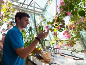 The new greenhouse location will be more focused on botanical research. SARAH FRANKLIN-GILLETTE / THE FLAT HAT